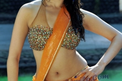 thumbs_Tamanna_Hot_Photos9.jpg