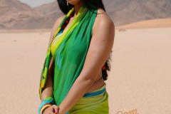 thumbs_Actress_Anushkas_in_hot_saree32.jpg
