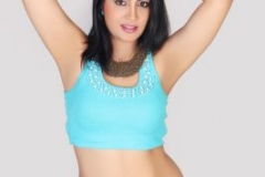 normal_actress-arshi-khan-4d-bollywood-film-newz66-images_281129