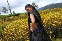 palayankottai_hot_movie_stills24