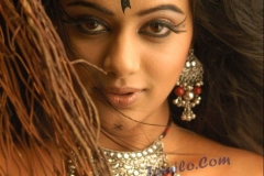priyamanis_hot_photos4