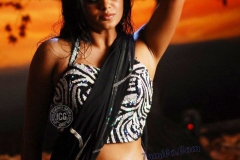priyamanis_hot_photos6