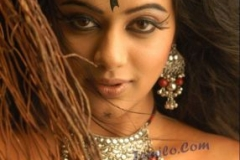 normal_priyamanis_hot_photos4
