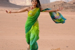 actress_anushkas_in_hot_saree23