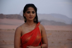actress_anushkas_in_hot_saree24