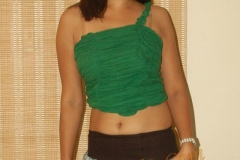 archana_bhatt_hot_actress_photos16