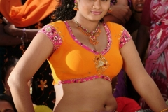 Chirutha Puli Movie Hot Stills