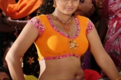 normal_hot_swathi_varma_wet_04