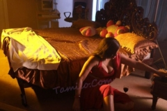 normal_hot_swathi_varma_wet_06